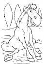 animali/cavalli/cavallo_05.JPG