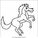 animali/cavalli/cavallo_17.JPG