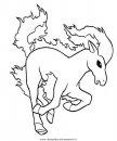 animali/cavalli/cavallo_50.JPG