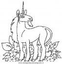 animali/cavalli/cavallo_79.JPG