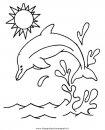 animali/delfini/delfino_delfini_22.JPG