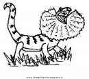 animali/dinosauri/clamidosauro.JPG