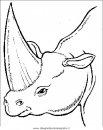 animali/dinosauri/dinosauro_051.JPG
