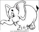 animali/elefanti/elefante_29.JPG