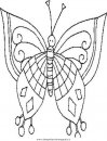 animali/farfalle/Butterfly_farfalla.JPG