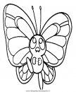 animali/farfalle/farfalla_27.JPG