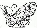 animali/farfalle/farfalla_40.JPG