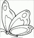 animali/farfalle/farfalla_45.JPG