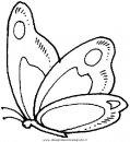 animali/farfalle/farfalla_a01.JPG