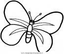 animali/farfalle/farfalla_a05.JPG