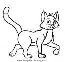 animali/gatti/gatto_005.JPG