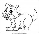 animali/gatti/gatto_034.JPG
