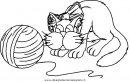 animali/gatti/gatto_038.JPG
