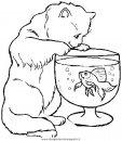 animali/gatti/gatto_049.JPG