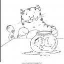 animali/gatti/gatto_052.JPG