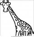 animali/giraffe/giraffa_07.JPG