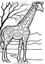 animali/giraffe/giraffa_36.JPG