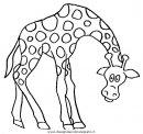 animali/giraffe/giraffa_47.JPG