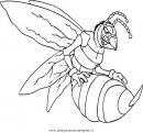 animali/insetti/calabrone_2.JPG