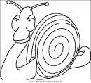 animali/insetti/insetto_16.JPG
