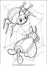 animali/insetti/insetto_35.JPG