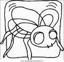 animali/insetti/insetto_94.JPG