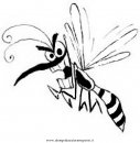 animali/insetti/zanzara_6.JPG