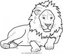 animali/leoni/leone_21.JPG