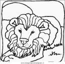 animali/leoni/leone_33.JPG