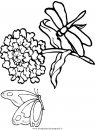 animali/libellule/libellula6.JPG