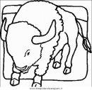 animali/mucche/mucca_toro_27.JPG