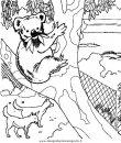animali/orsi/orso_003.JPG