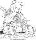animali/orsi/orso_004.JPG
