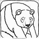 animali/orsi/orso_042.JPG