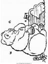 animali/orsi/orso_106.JPG