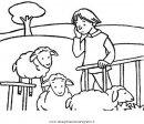 animali/pecore/ovile_1.JPG