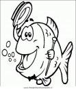 animali/pesci2/pesce_pesci_084.JPG