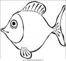 animali/pesci2/pesce_pesci_091.JPG