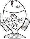 animali/pesci2/pesce_pesci_114.JPG