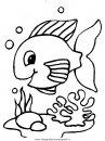 animali/pesci2/pesce_pesci_123.JPG