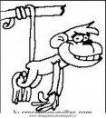 animali/scimmie/scimmia_02.JPG