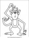 animali/scimmie/scimmia_05.JPG