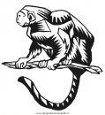 animali/scimmie/scimmia_26.jpg