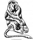 animali/scimmie/scimmia_27.jpg