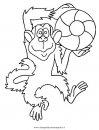 animali/scimmie/scimmia_40.JPG