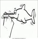 animali/squali/squalo_squali_15.JPG