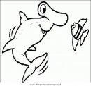 animali/squali/squalo_squali_17.JPG