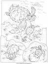 animali/tartarughe/tartaruga_tartarughe_02.JPG