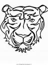 animali/tigri/tigre_25.JPG