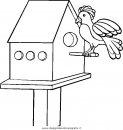 animali/uccelli/uccelli_017.JPG